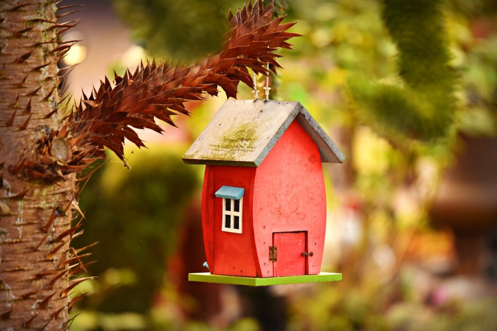 Casa de Aves